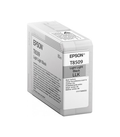Epson Singlepack Photo Light Light Black cartridge, T850900